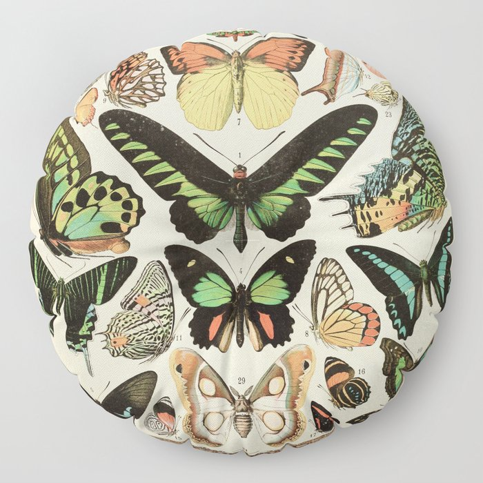 Papillon II Vintage French Butterfly Chart by Adolphe Millot Floor Pillow