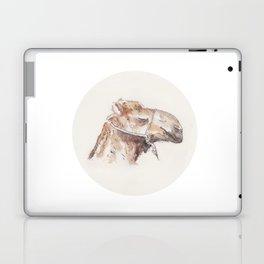 Croquis - Maroc Laptop & iPad Skin