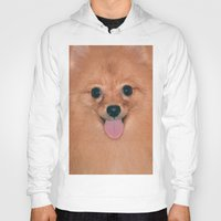 pomeranian Hoodies featuring Pomeranian by Pancho the Macho