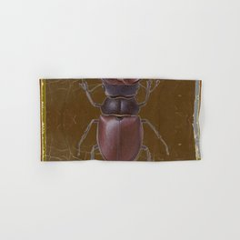 ANTIQUE STAG-HORNED BEETLE BROWN ART Hand & Bath Towel