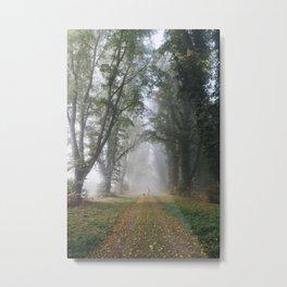 Female walking her dog in early morning fog between an avenue of trees. Norfolk, UK. Metal Print