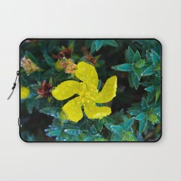 Small yellow flower with water drops Laptop Sleeve