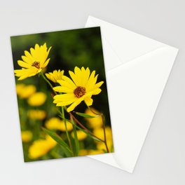 Narrow-Leaved Sunflowers Stationery Cards