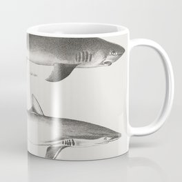 Different types of Sharks  from Zoology of New York (1842-1844) by James Ellsworth De Kay Coffee Mug