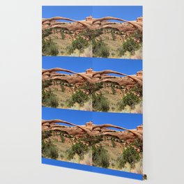 Beautiful Landscape Arch Wallpaper
