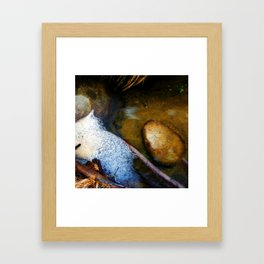 Bubbles and Rocks in the Grottos Framed Art Print