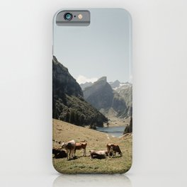 mountain cows in Switzerland | cowbells | Seealpsee | Ebenalp | Swiss alps | Europe | nature | landscapes | travel print | travel photography | art print  iPhone Case