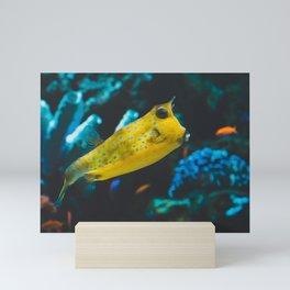 Longhorn Cowfish 002 Mini Art Print