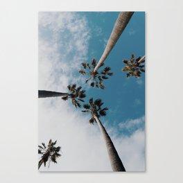 Palm Tree Summer Fun Canvas Print