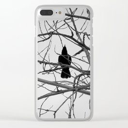Bird's Eye View Clear iPhone Case