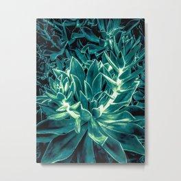 closeup green succulent plant texture background Metal Print