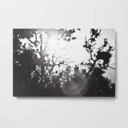Arizona Air Metal Print