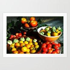 Yellow and red tomatoes II Art Print