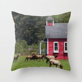 Elk School Recess Throw Pillow