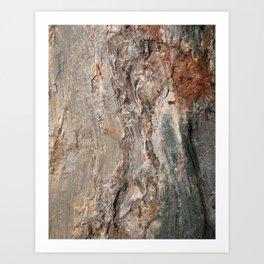 Maine Coast Rocks, No.1 Kunstdrucke