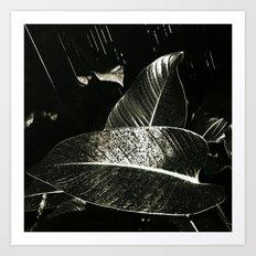 Dark days of autumn rain , wonderful as days can be Art Print