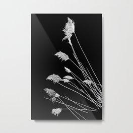 Dry Reeds on Black Metal Print
