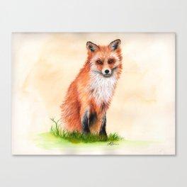 Fox In Watercolour Canvas Print