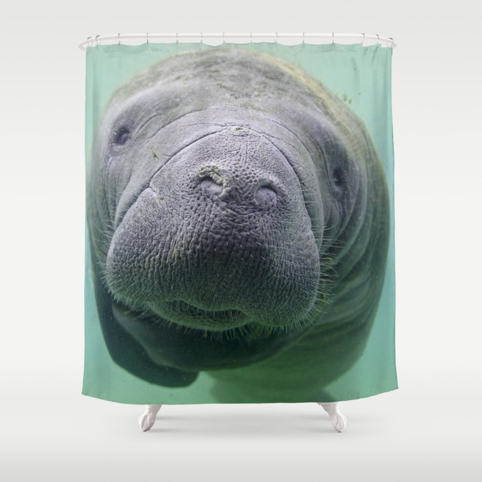 Exceptionnel Manatee Shower Curtain