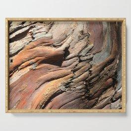 Eucalyptus tree bark texture Serving Tray