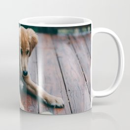 Harvey Coffee Mug