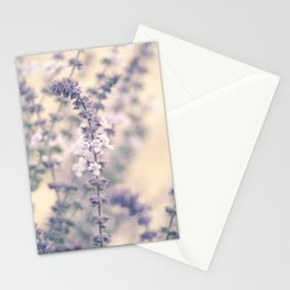 Lavender blossoms Stationery Cards