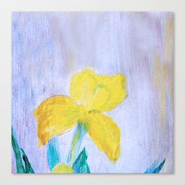 yellow summer iris 2 . Gift Ideas for Him and Her Canvas Print