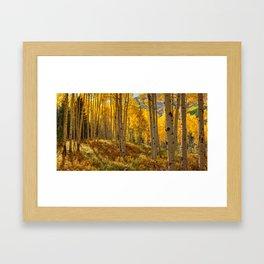 Autumn Aspen Forest Aspen Colorado Framed Art Print