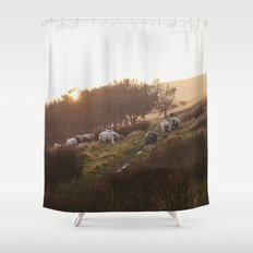 Sheep grazing on hillside at sunset. Derbyshire, UK. Shower Curtain