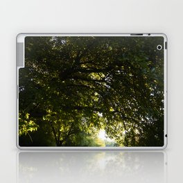 Silhouetted Leaves Abstract II Laptop & iPad Skin