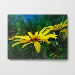 Juxtaposed Prairie Metal Print