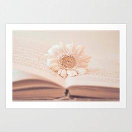 Serenity Of Books Art Print