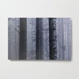 Mountain Forest Foggy Adventure Metal Print