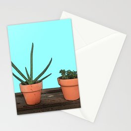 Succulents in Terracotta Stationery Cards