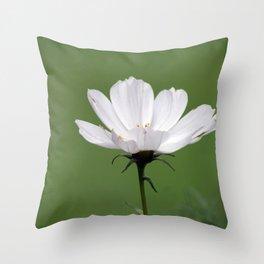 White Cosmo Daisy Throw Pillow