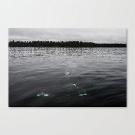 Whale below Canvas Print