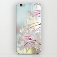 jasmine iPhone & iPod Skins featuring Jasmine by 8am Photography