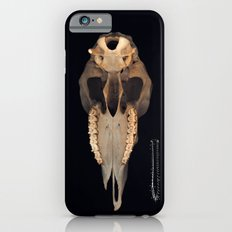 vanitas iPhone 6s Slim Case