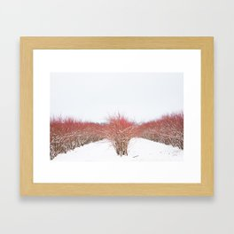 Field in the Snow Framed Art Print