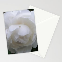 Pure White Peony Stationery Cards