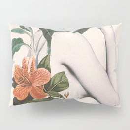 natural beauty-collage 2 Pillow Sham