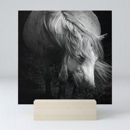 Pregnant Dartmoor Pony Mare Mini Art Print