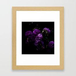 Grimhilde 02 Framed Art Print