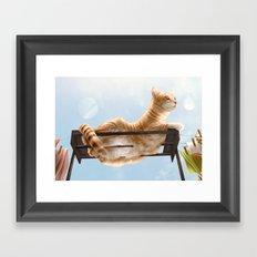 My Neighbour's Cat Framed Art Print