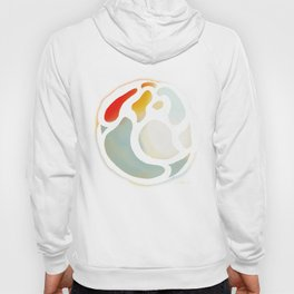 Color Orb Hoody