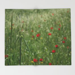 Seed Head With A Beautiful Blur of Poppies Background Throw Blanket