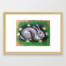 White Rabbit With Daisies Framed Art Print