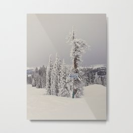 Frost Bite Metal Print