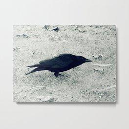 dark crow Metal Print