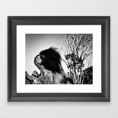 Monochrome Chin Framed Art Print